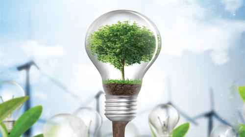 Light bulbs w Tree